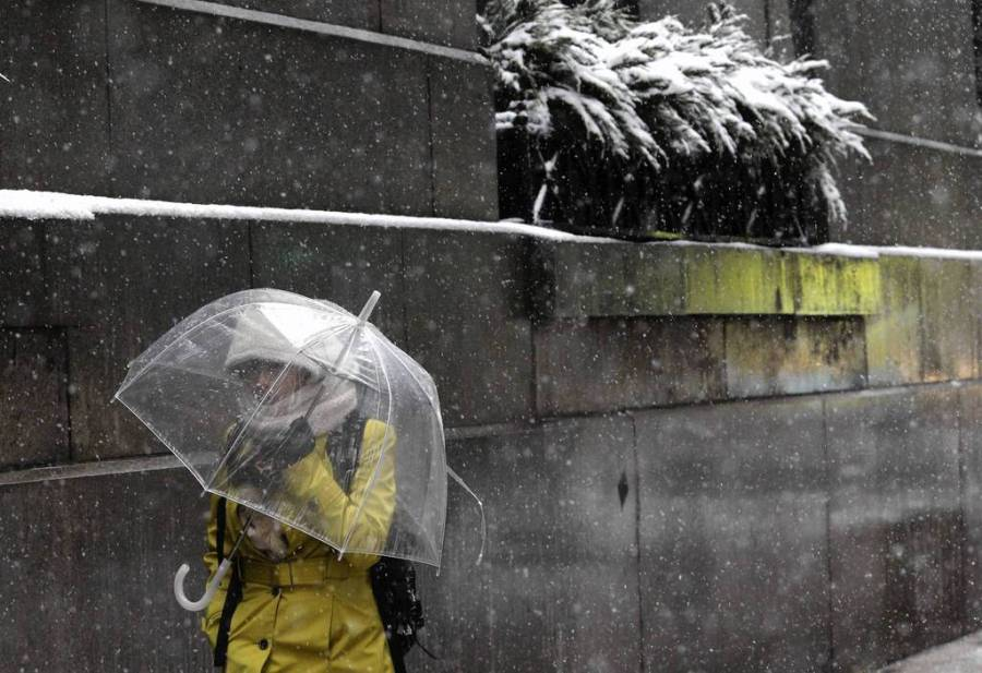 A woman protects her eyes from the stinging snow as she walks down LaSalle Street in downtown Chicago. — Nancy Stone, Chicago Tribune, March 5, 2013
