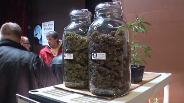 Chicago may set its own pot rules