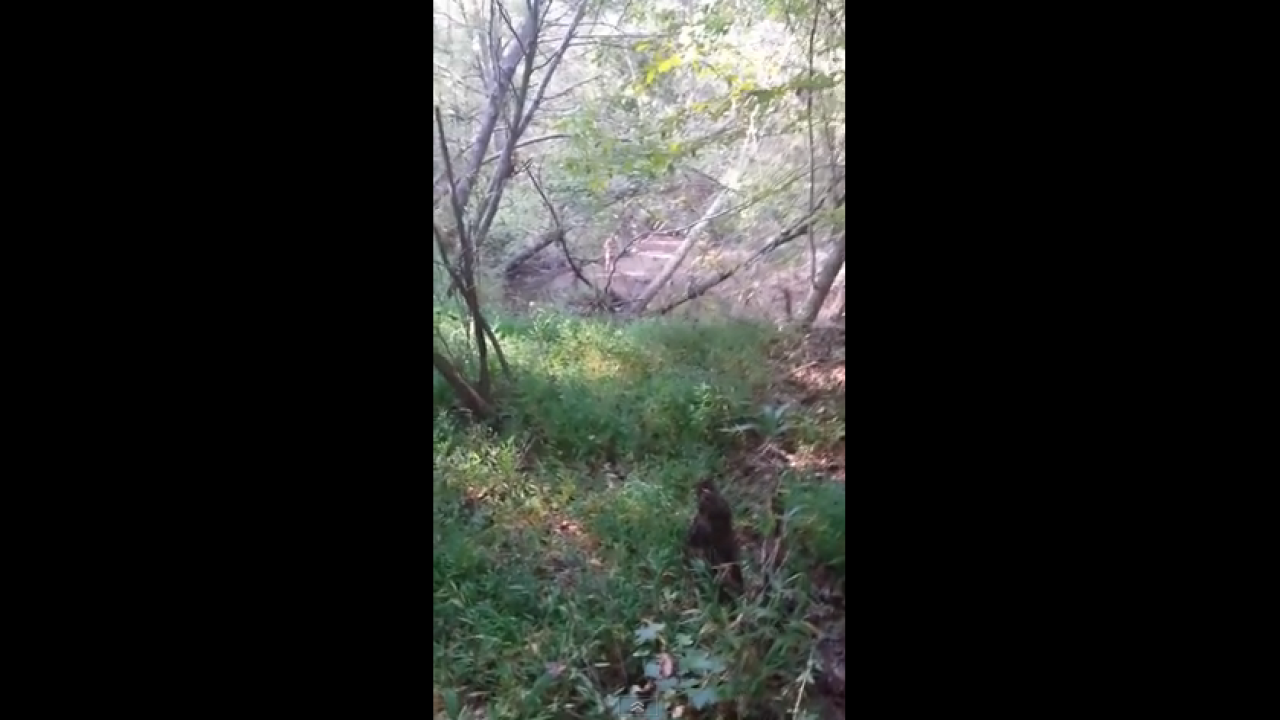 Hunter finds naked man in the woods, video goes viral