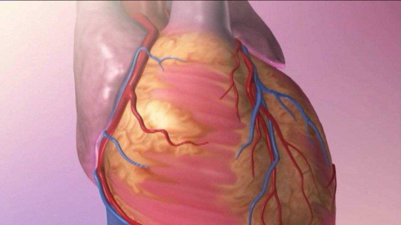 Καρδιολόγος συμμερίζεται τις ανησυχίες, τις ελπίδες, καθώς η ζήτηση για την καρδιά γιατροί παίρνει μια βουτιά
